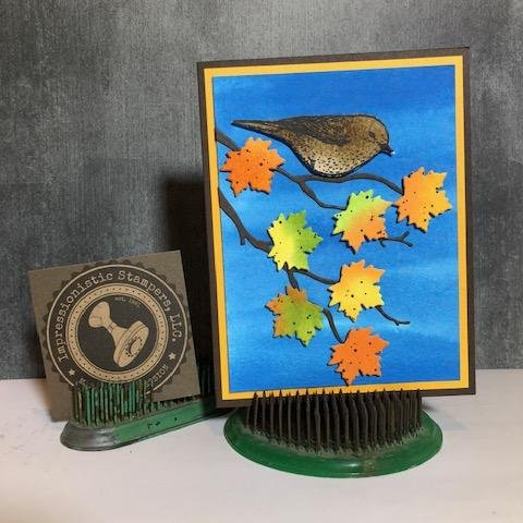 Best Birds and Seasonal Layers say goodbye to fall!
